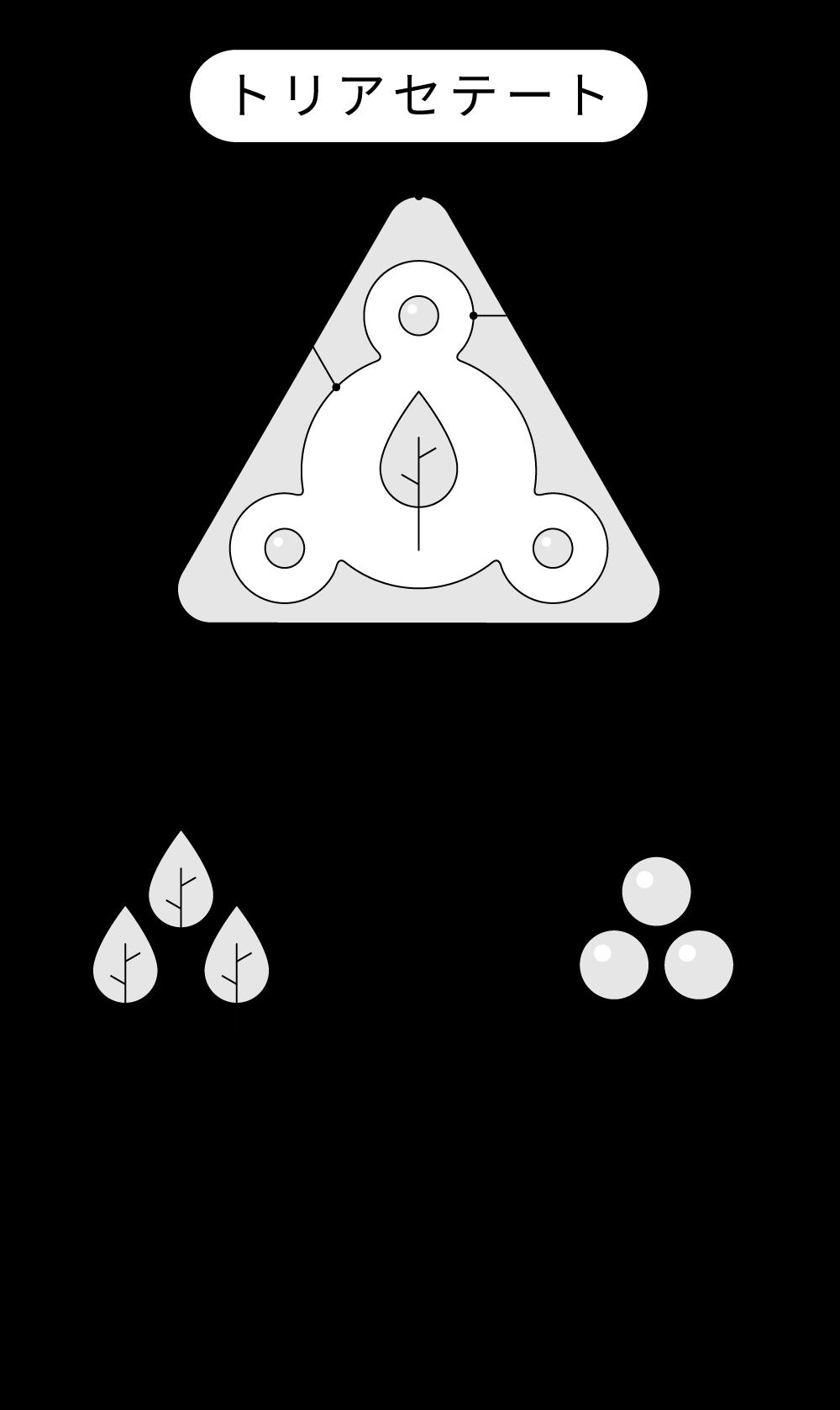 トリアセテートの構造紹介
